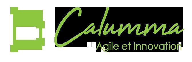 Calumma Conseil - Agence spécialisée dans la transformation sociale et digitale